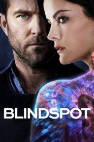 Blindspot: Mapa zbrodni