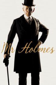 Pan Holmes