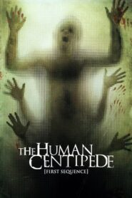 Ludzka stonoga